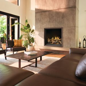 Napoleon Elevation™ X Direct Vent Gas Fireplace