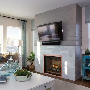 Regency Grandview Gas Fireplace