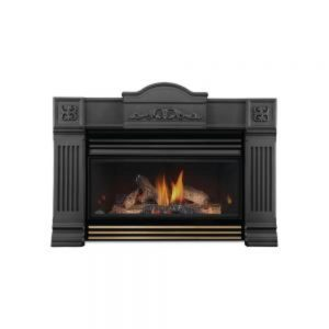 Napoleon Roxbury™ 3600 Gas Fireplace Insert