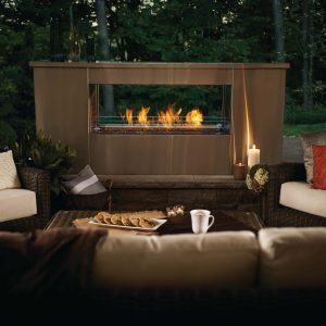 Napoleon Galaxy™ See Through Outdoor Fireplace