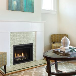 Regency Horizon Radiant Compact Gas Insert 3