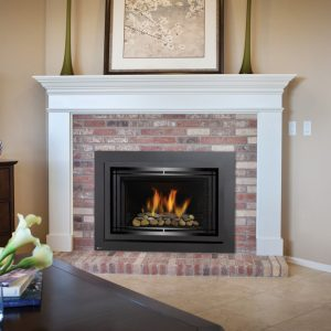 Regency Horizon Radiant Compact Gas Insert 4