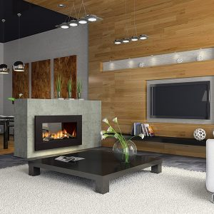 Regency Horizon Gas Fireplace 42″ See- Thru