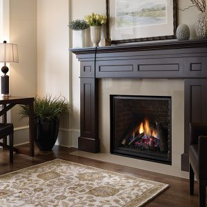 Regency Liberty Gas Fireplace