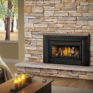 Napoleon Roxbury™ 30 Gas Fireplace Insert