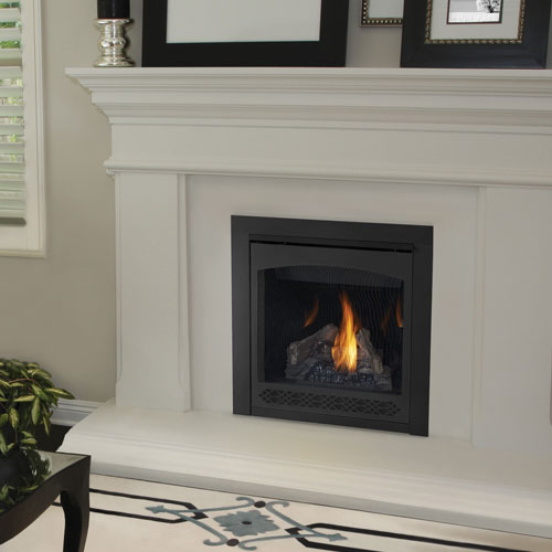 Napoleon Ascent X 36 Gx36 Fire Place