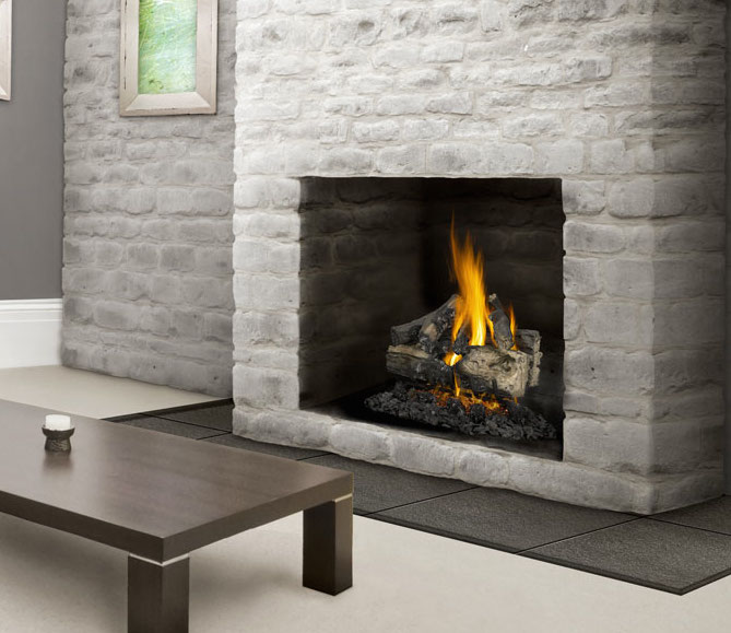 Napoleon Vector LV50 2 See Thru Gas Fireplace - Fireplace ...